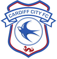 Sample Cardiff City Fan Page